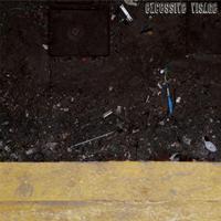 Excessive Visage EP 2010